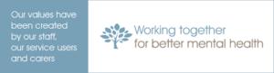NSFT logo 2