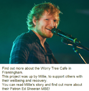 The Worry Tree Cafe in Framlingham, Suffolk