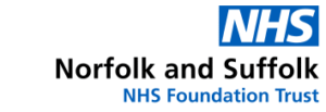 NSFT logo new